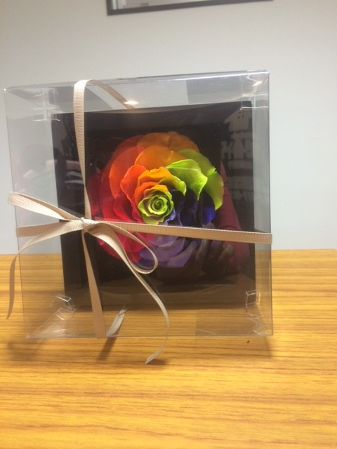 flower2-2-e1454313050131